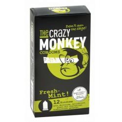 Préservatifs Crazy Monkey Menthe Fraiche